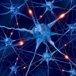 Remote Brain Cell Control Project Wins BRAIN Funding