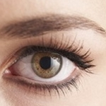 Promising Results in New Stem Cell Retinal Treatments