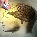 Researchers Identify Gut Microbiome as New Therapeutic Target for Alzheimer's Disease