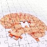 Scientists Prevent Nerve Cell Death and Neurodegenerative Disease Progression