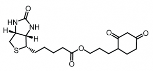 The DCP-Bio1 probe for protein cysteine oxidation. Learn more here >>